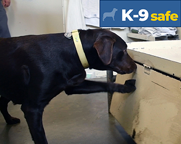 news_inspect2protect_K9-safe2